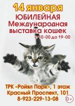 Юбилейная выставка кошек 14 января.